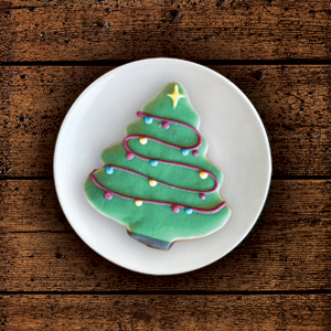 Seasonal Iced Cookies